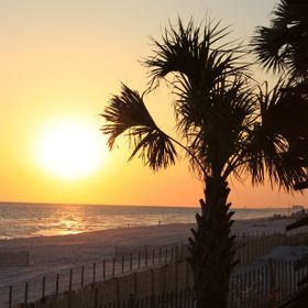 This picture was taken on the beach the evening before my niece's wedding in Panama City Beach Florida. It was a beautiful evening and I cou...