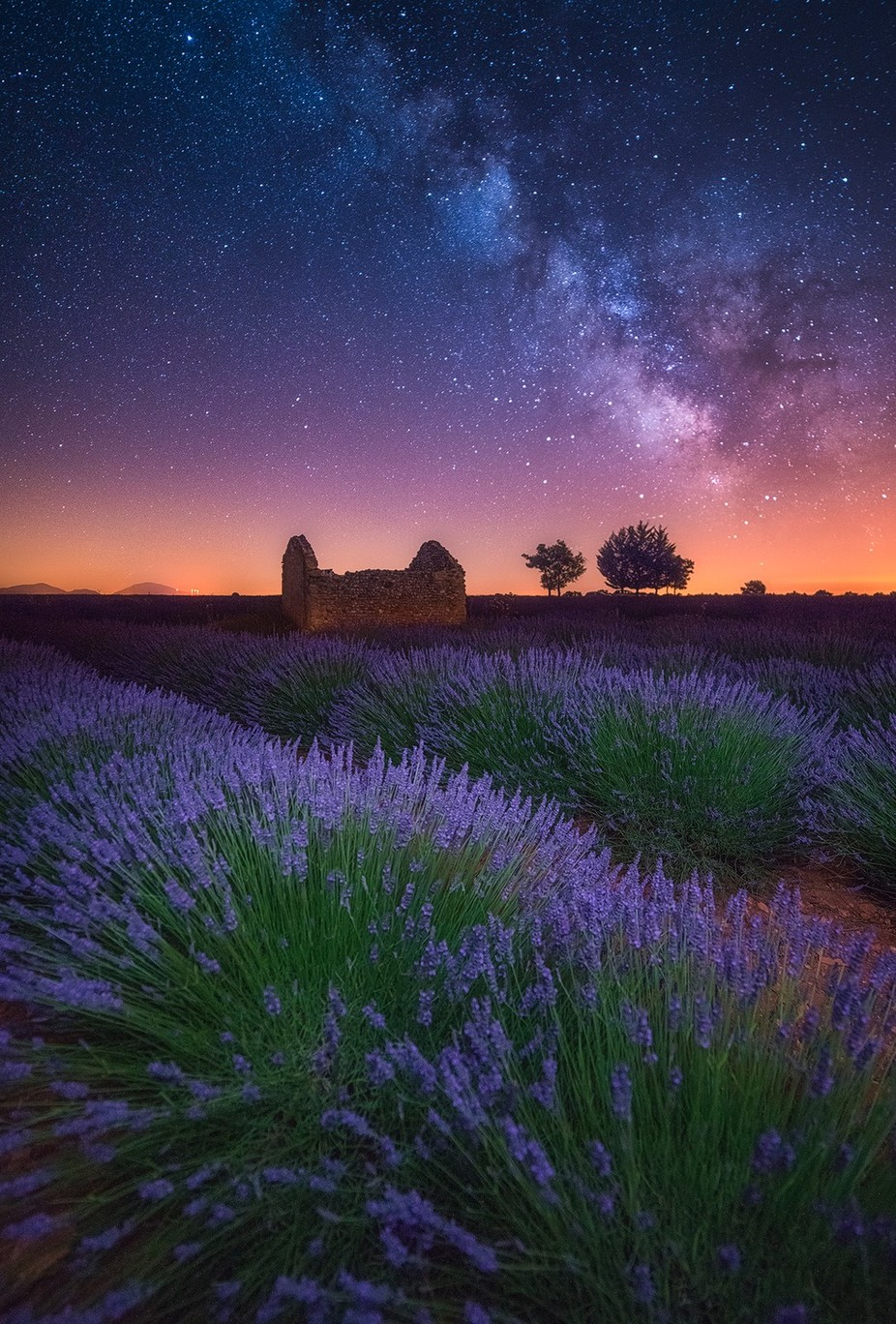A Lavender Night by albertdros - Nature And The Night Photo Contest