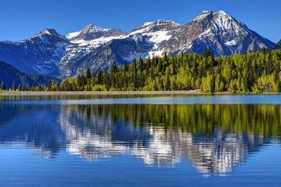 Mt. Timpanogos Reflected In Silver Flat Reservoir - Utah