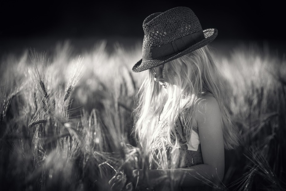 shot this little lady in the middle of a cornfield in sunset yesterday.