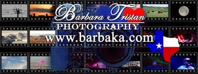 Barbara Tristan Photography www.barbaka.com