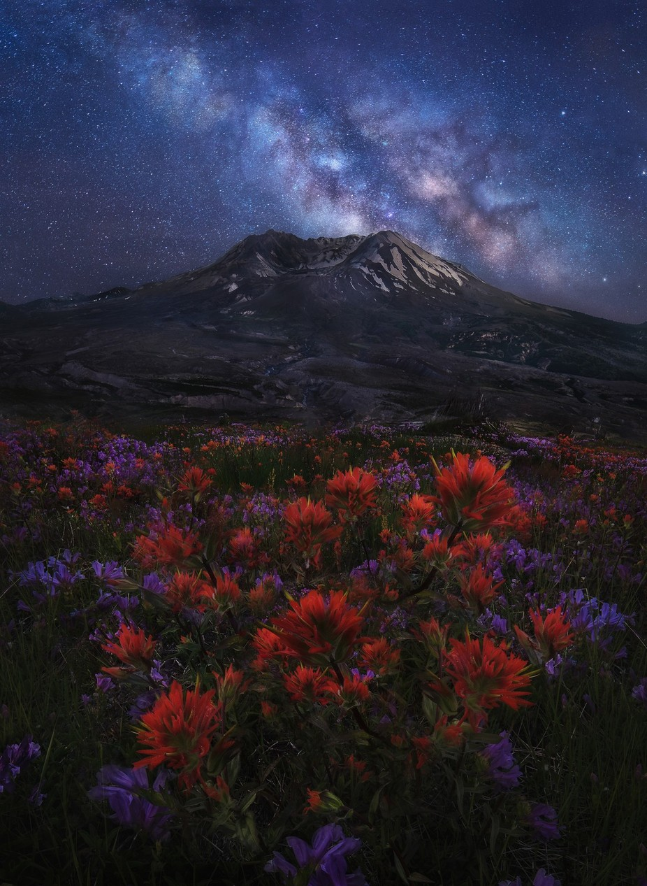 Rebirth by craigkonya - Our World At Night Photo Contest