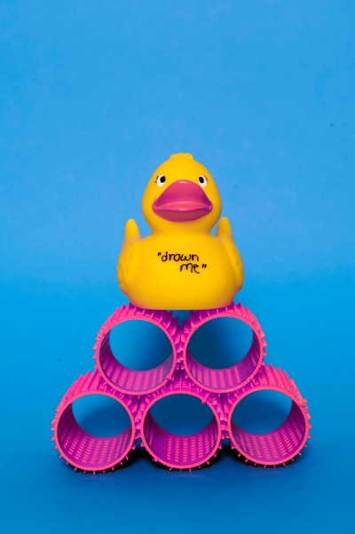 Duck on Hair Curlers
