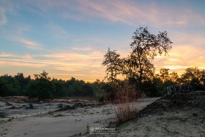 Sunrise Silhouettes & Colors
