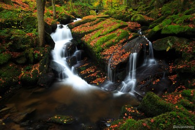 Cascades-waterfalls - Auvergne - France