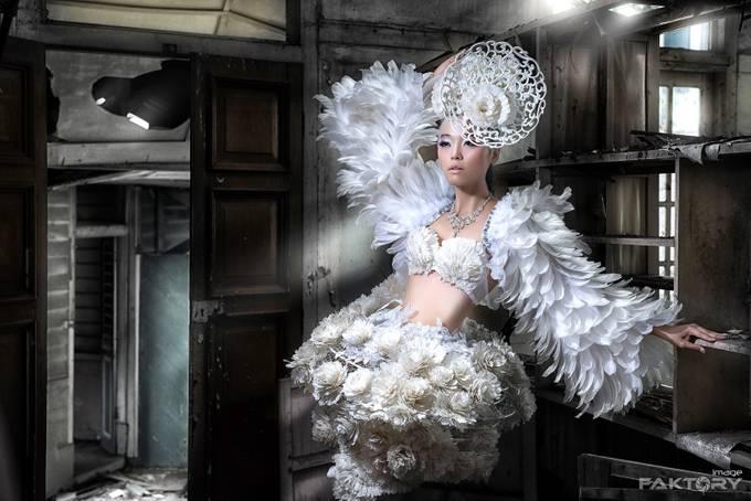 Asian Swan  by ImageFaktory - My Best Shot Photo Contest Vol 2