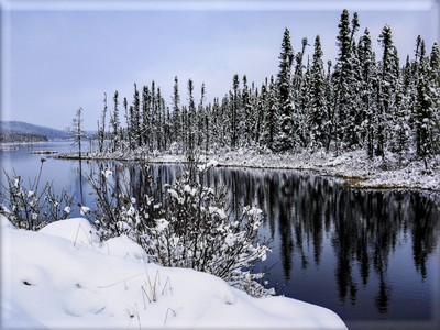 Winter Reflection on the River