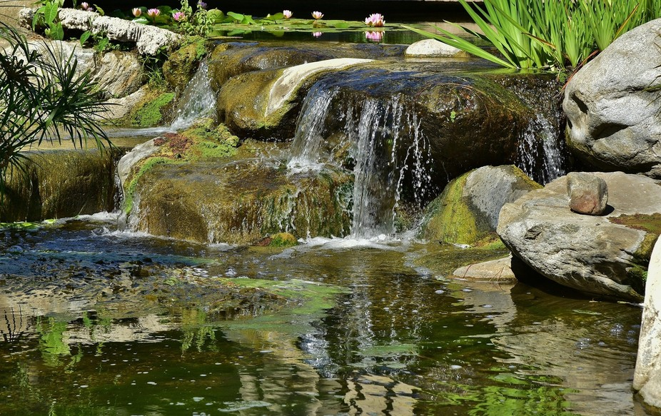 This lovely little waterfall is located with a lily pond that is located in a commercial complex ...
