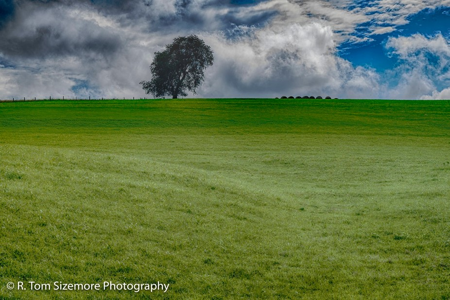 Taken in Clay County, West Virginia, this recently cut field with the outline of the bales of hay next to the lonely tree was too nice to drive by; I had to photograph it!