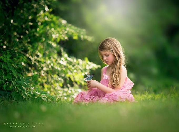 Butterfly by KellyALongphotography - Innocence Photo Contest
