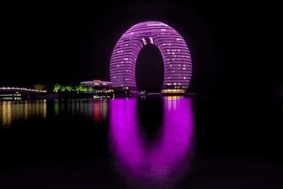 Purple Toilet Seat