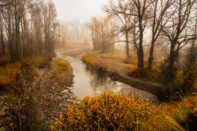 Halloweenie Creek by conniemcclaran - Fall 2017 Photo Contest