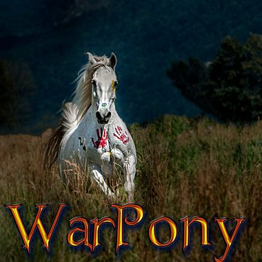 From the inaugural shoot of The WarPony Project https://www.facebook.com/WarPonyProject/