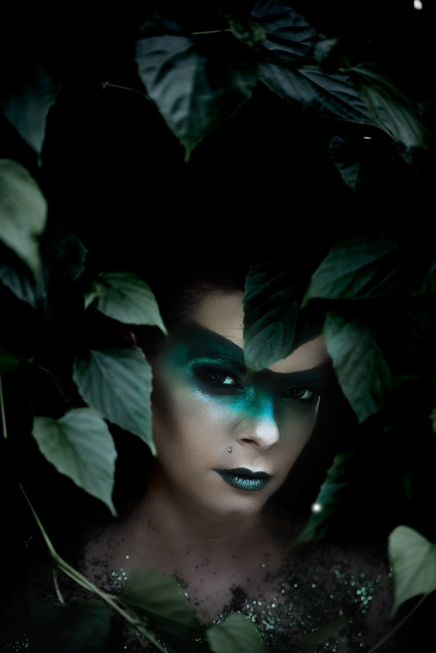 ENVY PART 2 by crystaldiane - Paint And Makeup Photo Contest
