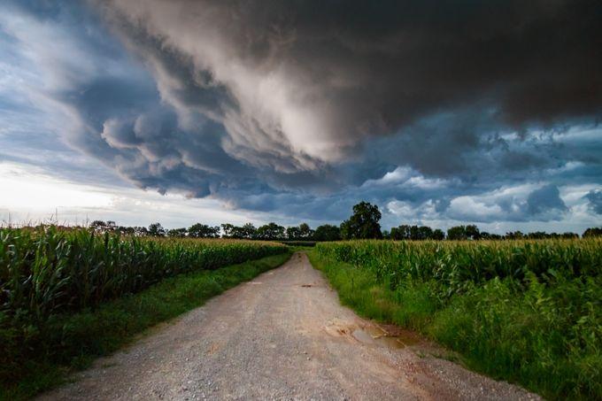 Close Call by patrickkulwicki - Country Roads Photo Contest