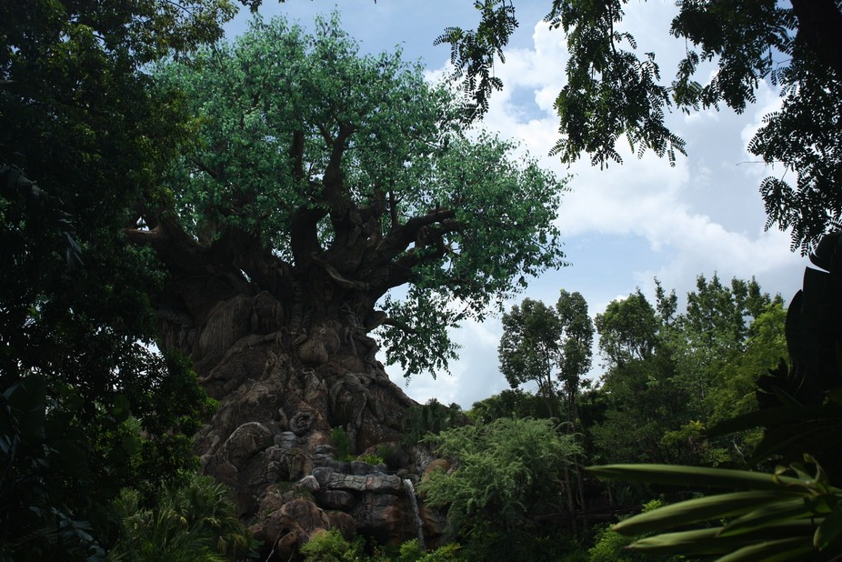 The Tree of Life is an iconic symbol of the Walt Disney World Animal Kingdom theme park. Standing...