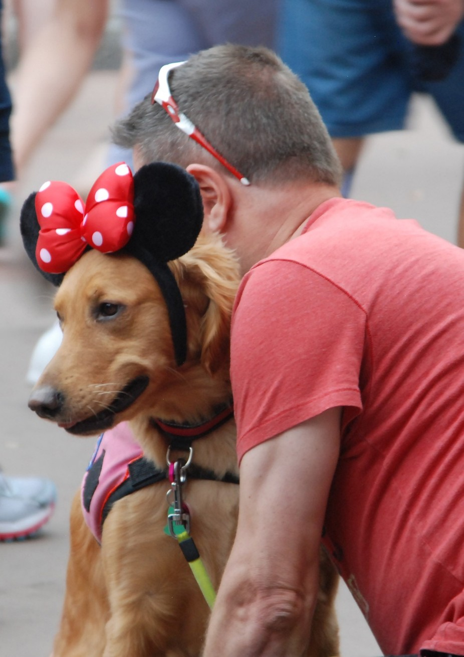 Disney Doggy