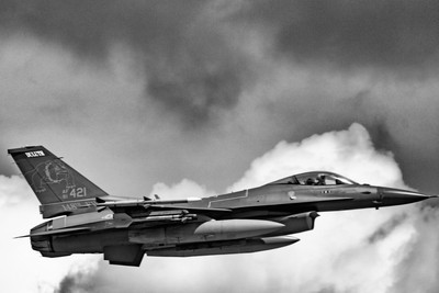Minnesota Air National Guard(179th Fighter Squadron) General Dynamics F-16C Fighting Falcon