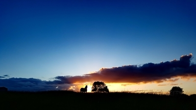 Sunset and The Silhouette