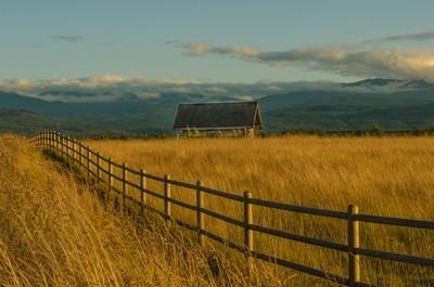 Cabin in field
