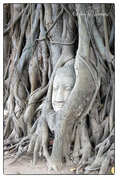 Ayutthaya - Thailand