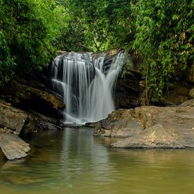 A dense forest and the silky pearls of water gushing from a decent height. Beauty of Western Ghats, Karnataka, India.