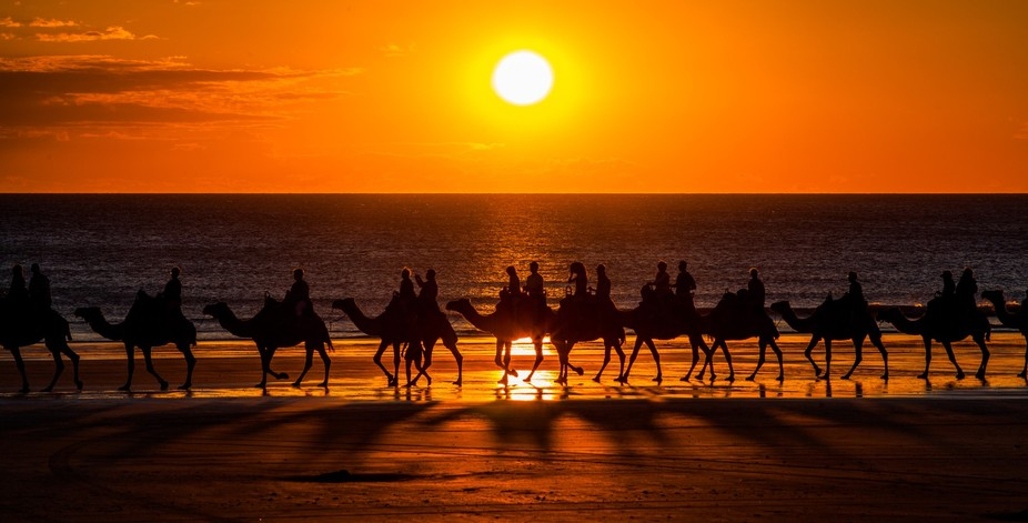 Cable Beach,Western Australia,Camel rides at sunset