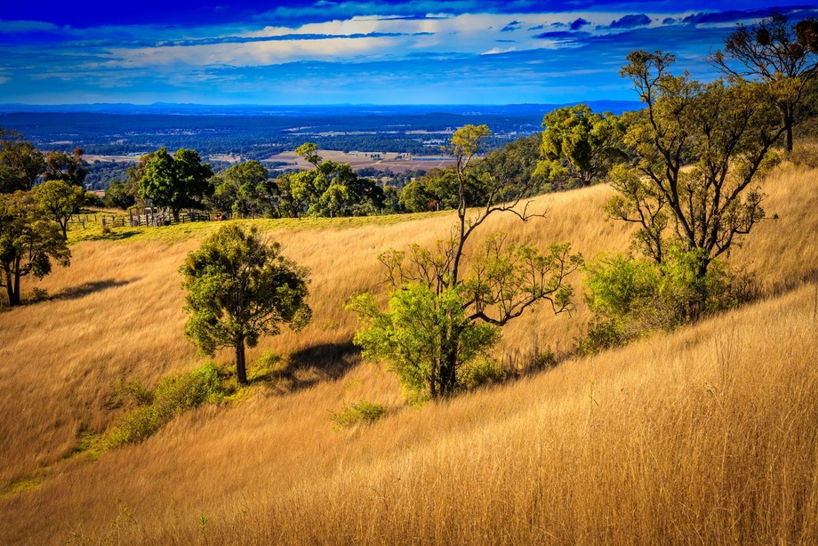 I took this image when my lovely wife and I were traveling between the wineries in Hunter Valley.