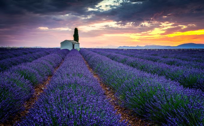 Valensole sunrise by MartinDolinsky - I Love The World Photo Contest
