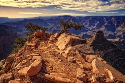 On the South Kaibab