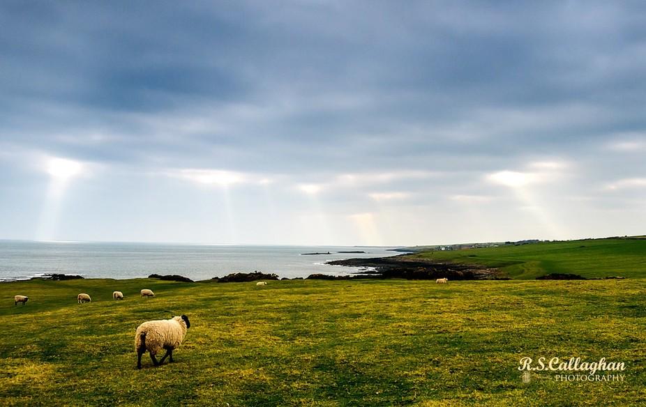 Northeast England on the North Sea coast.