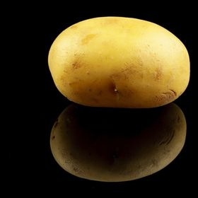 potato with black background