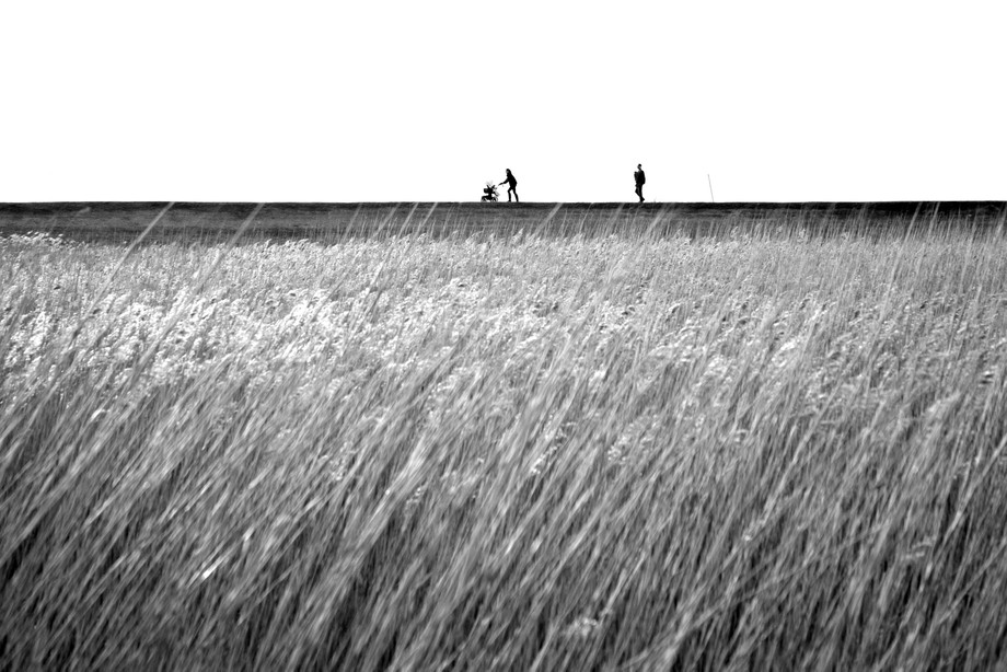 Day out Blakeney picfair