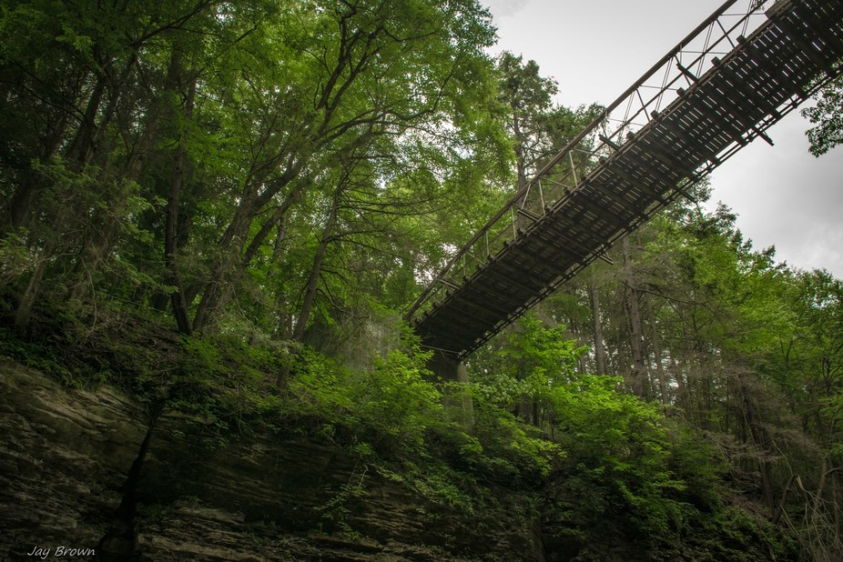 One of the many discoveries found within the Watkins Glen State Park in New York