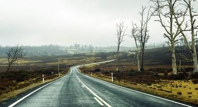 Tasmania. October 2015