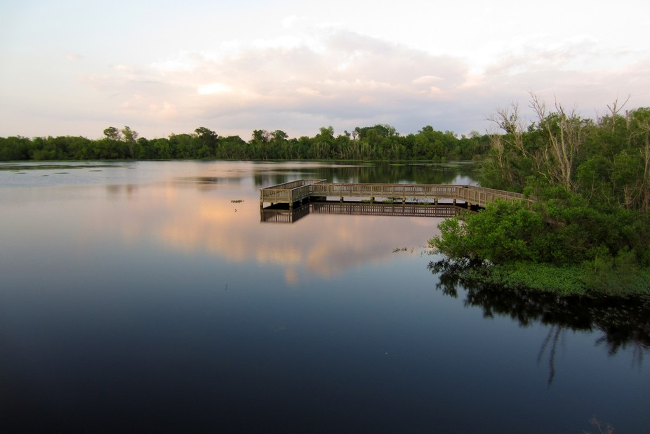 Taken in Sugar Land, Texas on a warm spring evening.