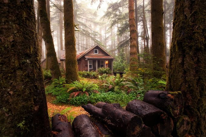 Cabin in the woods by blaydenthompson - Isolated Cabins Photo Contest