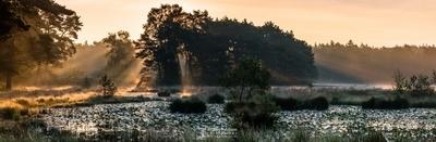 Panorama - Sunrays Ravenvennen