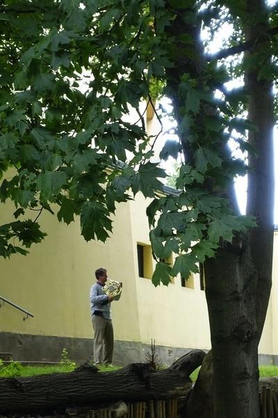 Musician in backyard