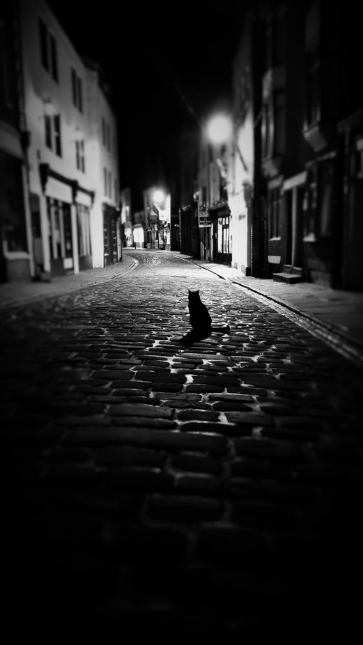 The lone protector by robwillis - City Life In Black And White Photo Contest