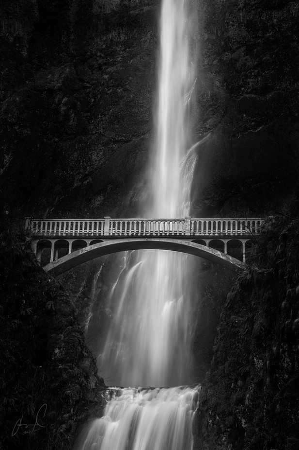multnomah falls by jasonmatias - The Water In Black And White Photo Contest