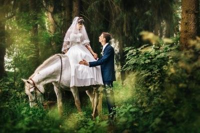 Wedding fairytale