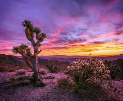 Pierce Ferry Sunset - Meadview, Arizona