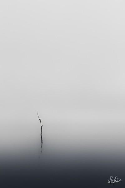 Foggy sunrise at Lake Jindabyne