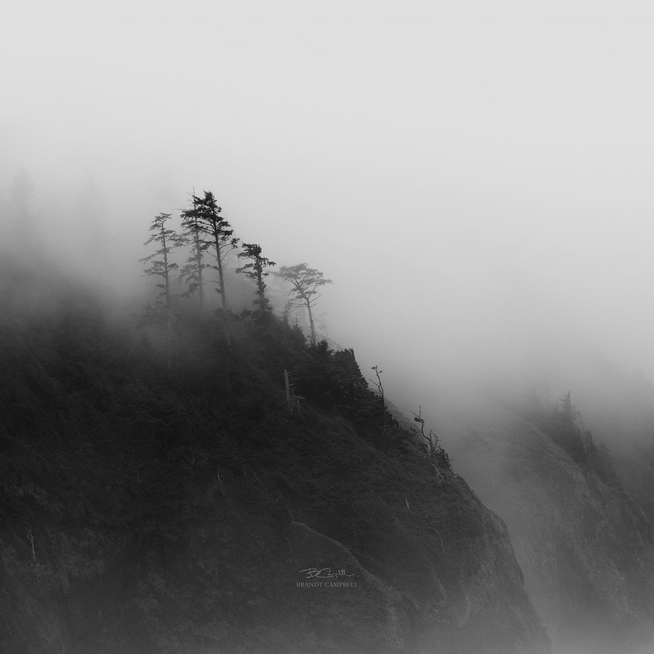 Kingdom of the Mist by brandtcampbell - Black And White Compositions Photo Contest vol2