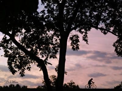 IMG_6957 biker