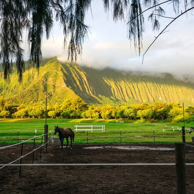 Waimanalo Koolau's at sunrise (1 of 1)
