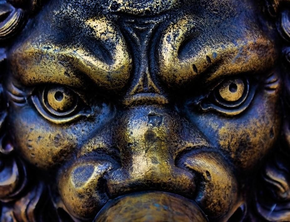 LionKingI