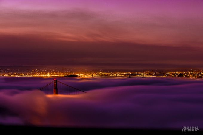 Karl Meets the Golden Gate Bridge by GuacInk - Your Point Of View Photo Contest