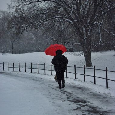 Central Park Red Umbrella